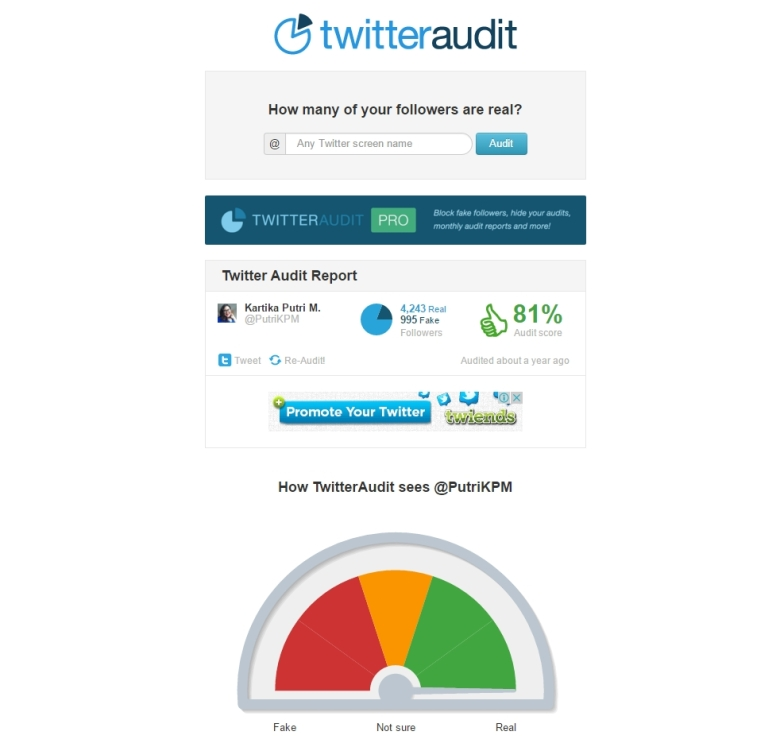 PutriKPM Gila Followers - Twitter Audit